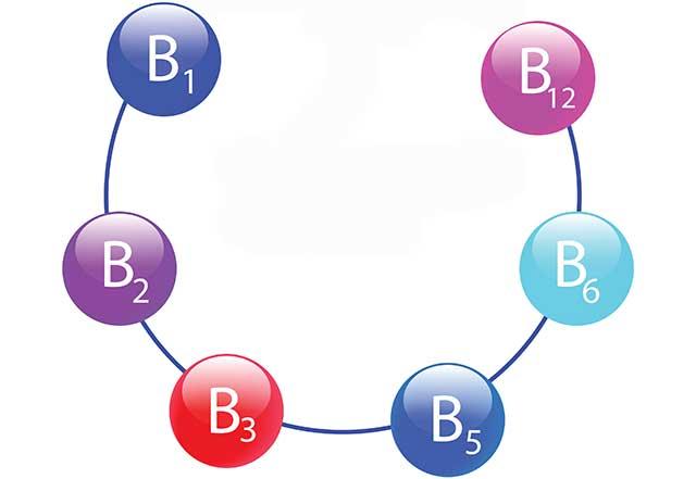 The Water Soluble Vitamins: Vitamin B1, B2, B3, B5, B6, and B12.