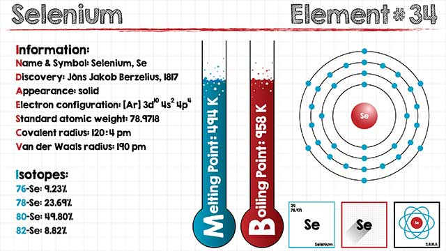 A Detailed Infographic Showing Basic Selenium Facts.