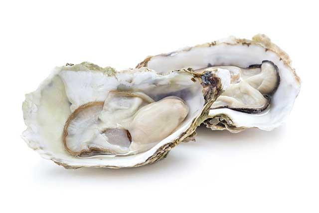 Two Open Fresh Oysters In Their Shells.