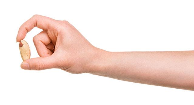 Woman's Hand Holding One Single Brazil Nut.