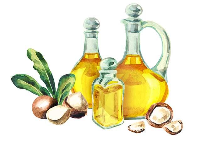 Hand Drawn Glass Bottles of Macadamia Nut Oil.