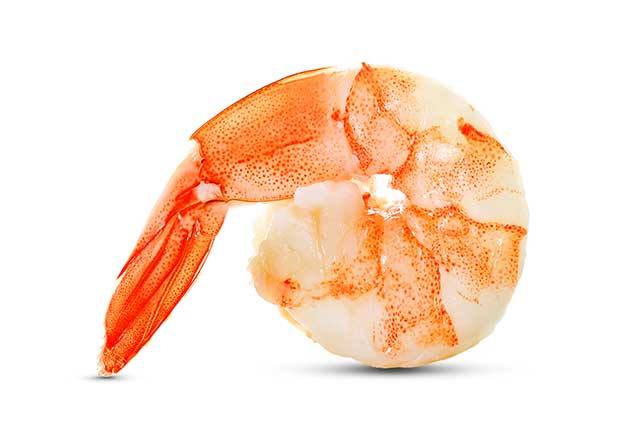 A Large Cooked Shrimp.
