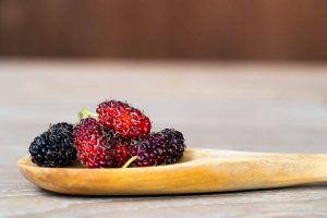 20 Types of Berries and Their Health Benefits - Nutrition Advance
