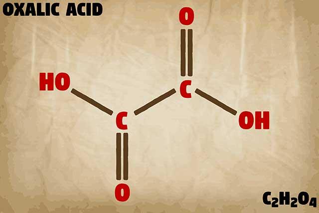 Molecular Structure of Oxalate (Oxalic Acid).
