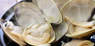 Numerous Open Clams In a Bowl.