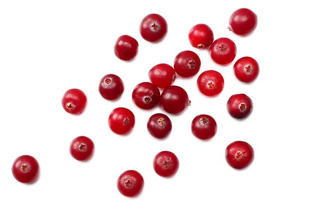 Spaced Out Fresh Cranberries On a White Background.