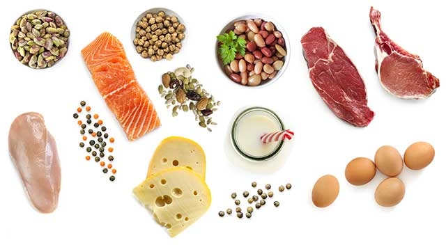 Various Animal and Plant Proteins Next To Each Other.