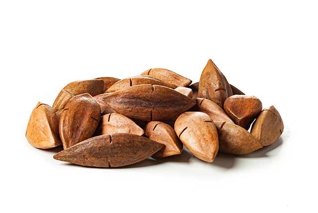 Pili Nuts (Canarium Ovatum) In Their Shells.