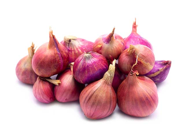 Dozen Red Shallots In a Pile.