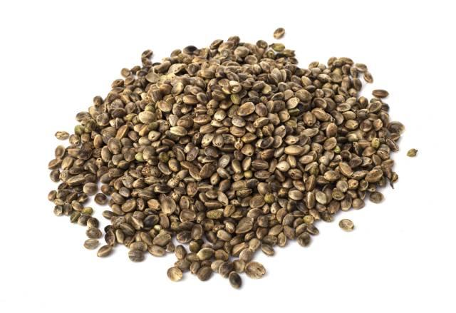 Pile of Hemp Seeds.