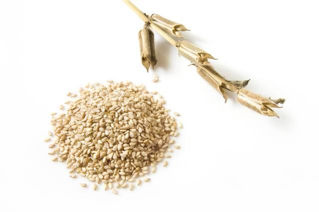 Pile of Sesame Seeds.