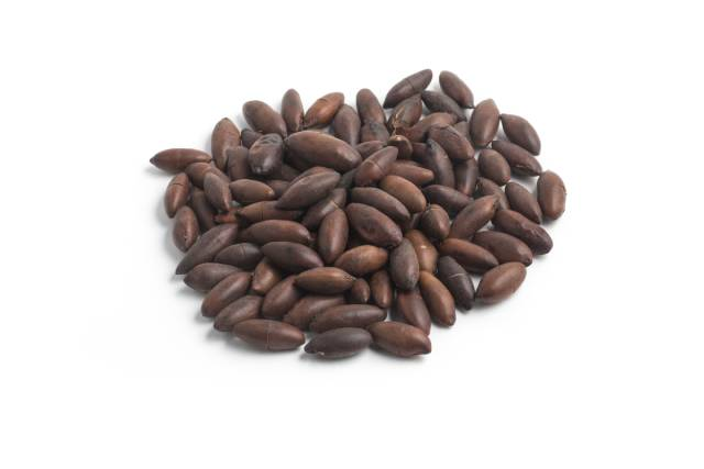 A Pile of Baru Nuts.