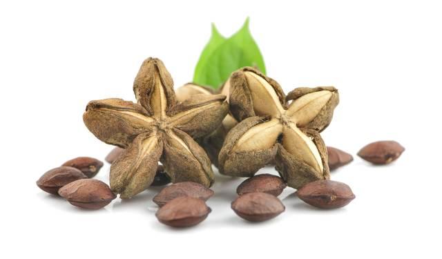 Shelled and Unshelled Sacha Inchi Nuts.