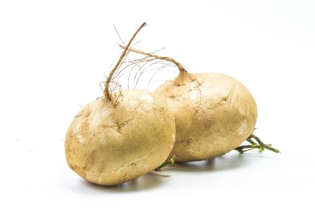 Two Whole Jicama Root Vegetables.