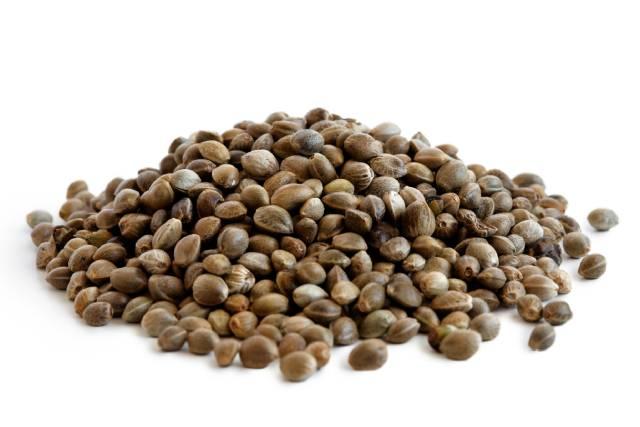 A Pile of Hemp Seeds.