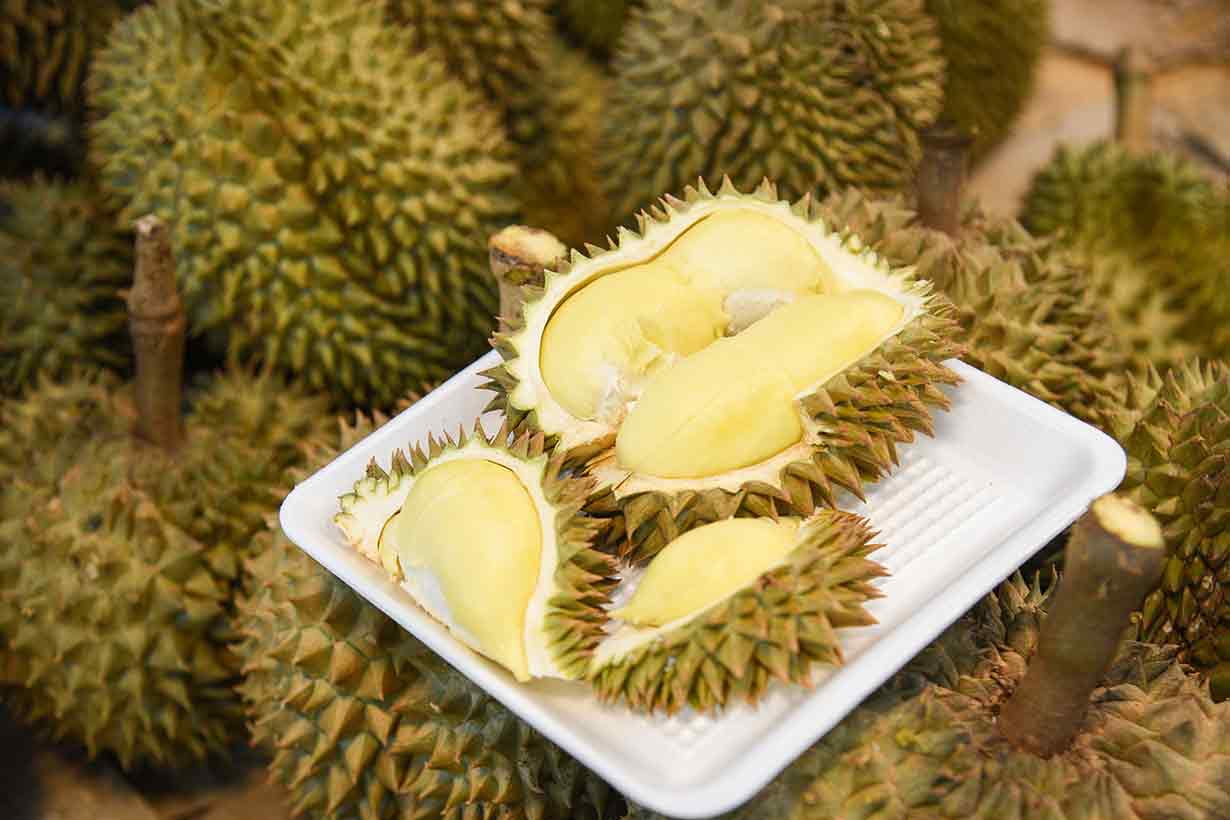 Sliced Open Durian Fruit With Yellow Flesh Showing.