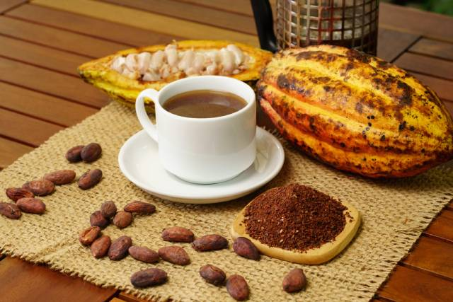 Cup of Brewed Cacao.