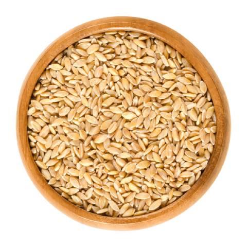 Einkorn Wheat In a Bowl.