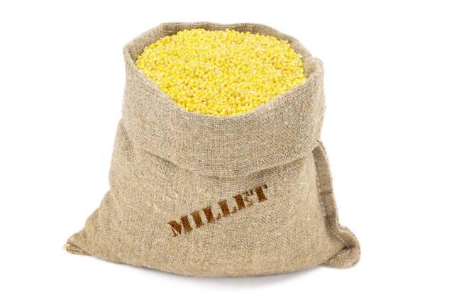 Sack of Millet Grains.