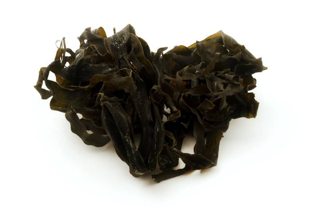 Dried Oarweed: a Sea Vegetable That Grows Around the Atlantic.