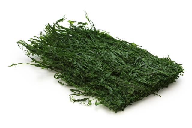 Dried Aonori Seaweed (Monostroma hariotti).